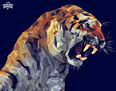 Vector tiger illustration process