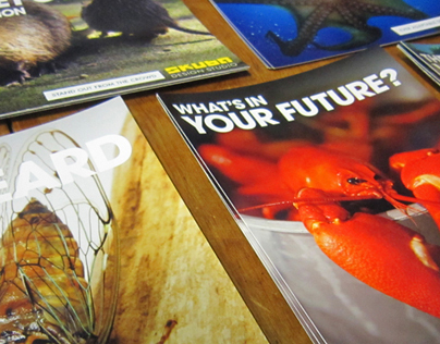 Hyper-local Postcard Marketing Campaign