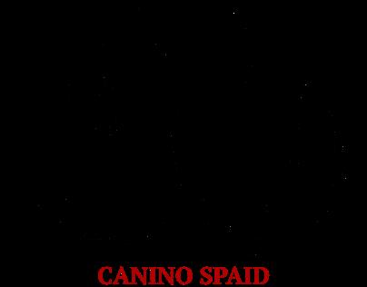 CaNino Spaid Artist Logo