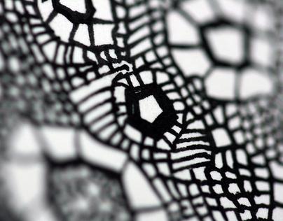 Black&White Drawings/Illustration