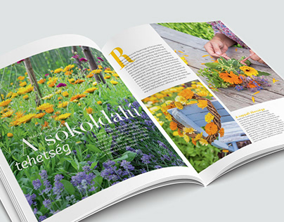 Interior Magazine Garden Special Issue
