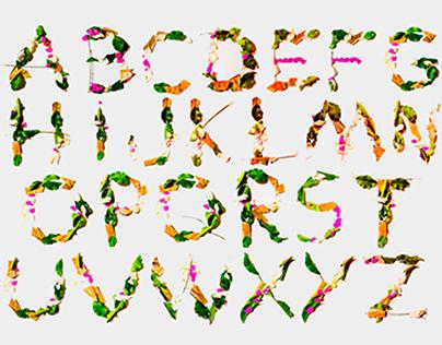 Tipografando com a natureza