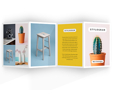Stylogram Accordion Brochure