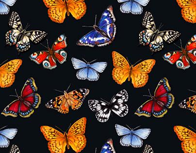 Watercolour Bright Vibrant Butterflies Pattern