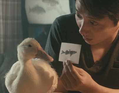 KYOBO Lifeplanet Viral films & Microsite