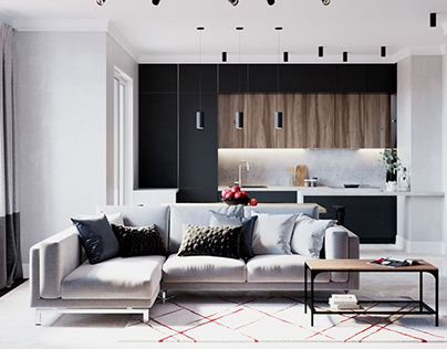 Private apartment interior design