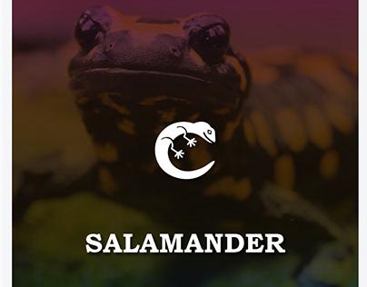 Salamander - weather app