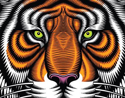 Fahrschule Tiger-L Driving School illustrations