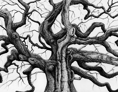 Great Oak - Tree 2