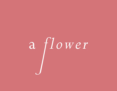A flower made with illustrator