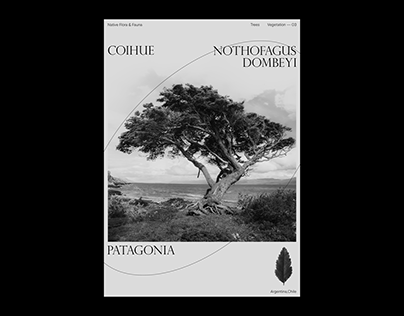 PATAGONIA — NATIVE TREES