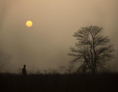 Visual Series   Shadows of Being