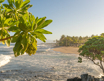 Hawaii Big Island Photography