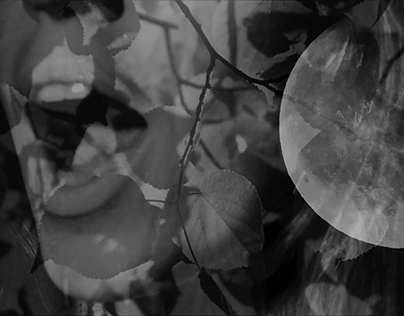 Galochki Music Video for Shuma