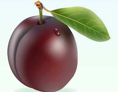 Realistic plum