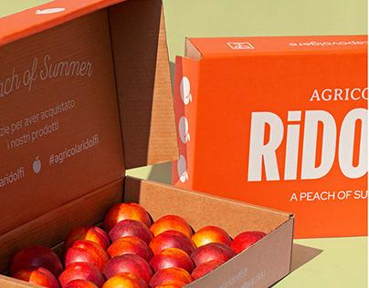Agricola Ridolfi | Branding