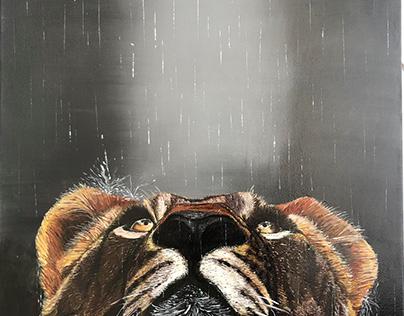 Peinture acrylique le lionceau sous la pluie