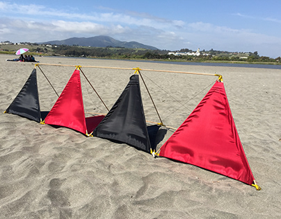 Aerodyne Modular Design. (kite)