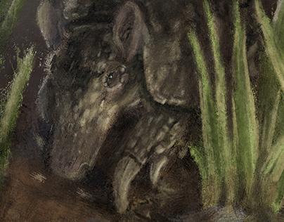 Tatu-canastra (Priodontes maximus)