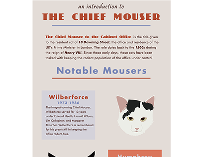 Chief Mouser Infographic