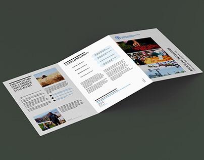 FAO Regional Initiatives brochure