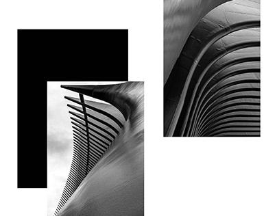 AUTUMN IN NEW YORK Through Fine Art To Minimalism