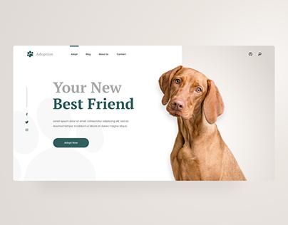 Pet Adoption Website Concept