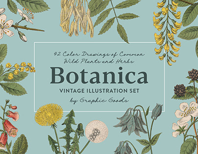 Botanica - Vintage Illustration Set