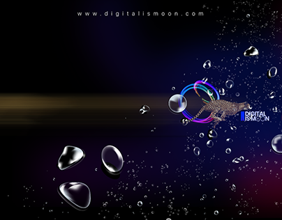 Banner Design for Digital Is Moon Creative Agency