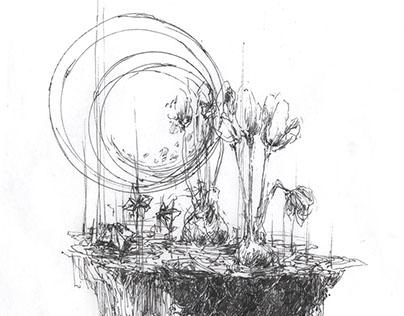Thin Noon Illustrations