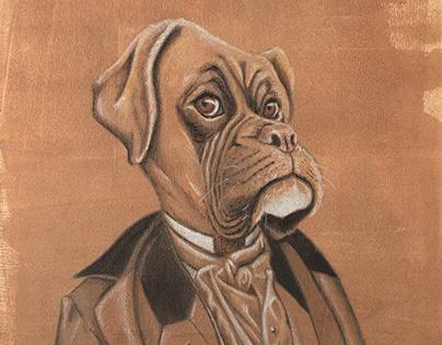 Boxer Doguerreotype