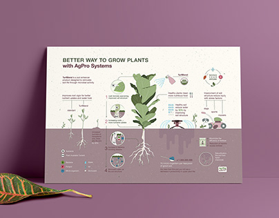 Agricultural Infographic