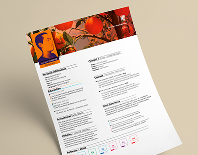 Resume cv (Clean and easy to edit)