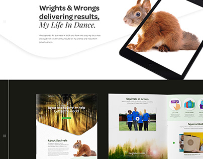 Scurry Squirrels Website Design