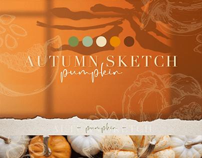 pumpkin. graphics. illustration.