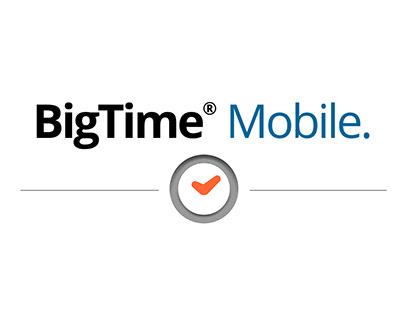 BigTime Mobile App