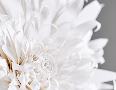 Amorepacific_Councelor (Flower concept paperart)