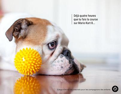 Club des DA 2019 - Nos amis les bêtes