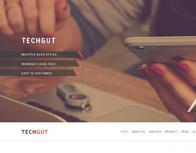 Techgut- One Page Corporate Template