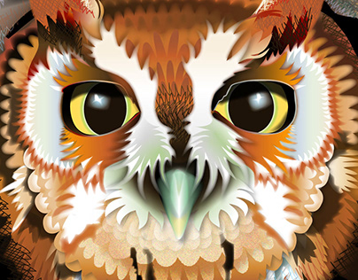 Adobe Illustrator - Compositions