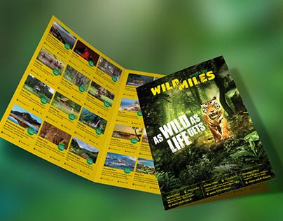 Brochure Design for Adventure Company