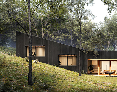 Small modern house in the woods