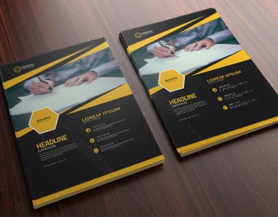 Business Flyer Design/Social Media Post Design
