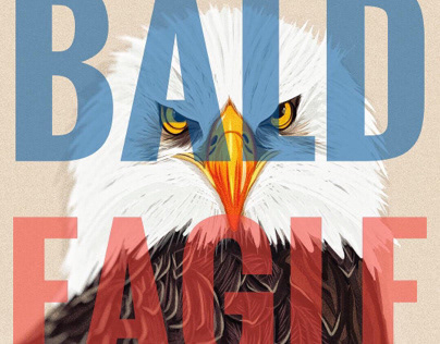 Illustration: Bald Eagle