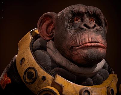 HAM. Space Chimpanzee.