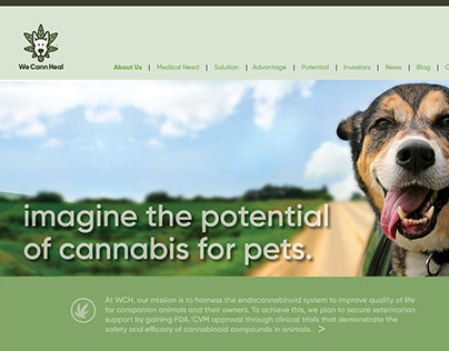 We Cann Heal Website