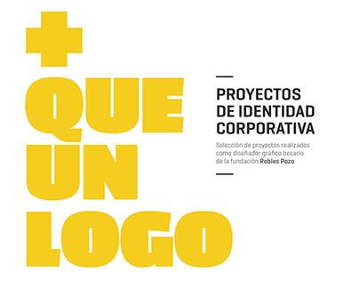 [Identidad visual] Fundación Robles Pozo