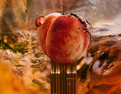 -James and the Giant Peach **NEW COVER PROJECT