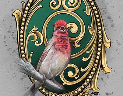 NYC BIRDS AND ORNAMENTS