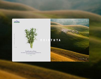 Epirus | Website redesign